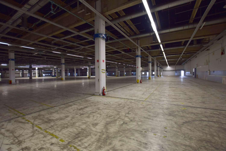 Hallen Kamp-lintfort, 47475 - Halle - Kamp-Lintfort, Gestfeld - D2356 - 9584155