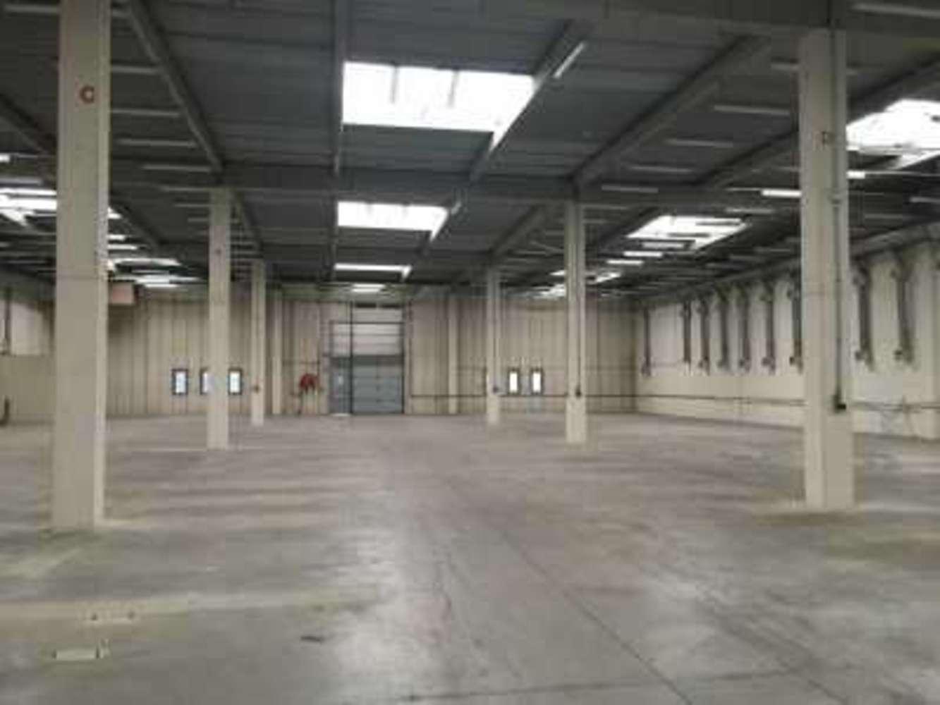 Activités/entrepôt Montigny le bretonneux, 78180 - 10 AVENUE AMPERE - 9586157