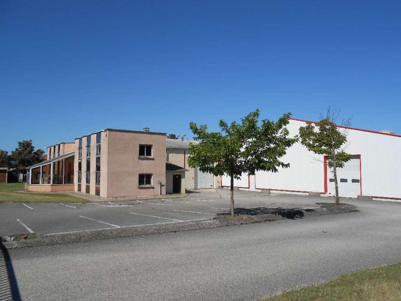 Activités/entrepôt Charvieu chavagneux, 38230 - ENTREPOT A VENDRE LYON - NORD-ISÈRE - 9590997
