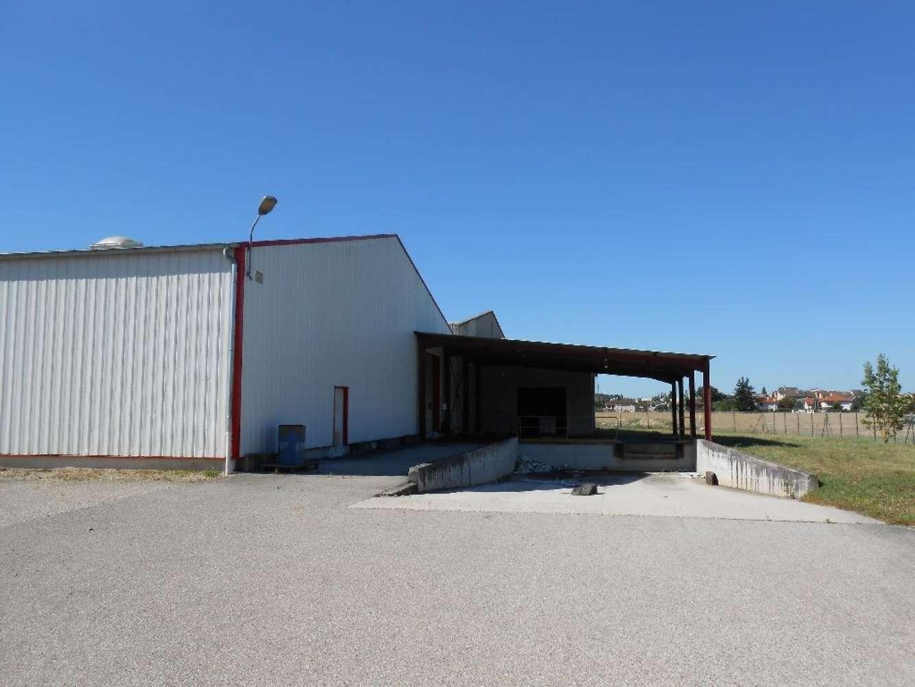 Activités/entrepôt Charvieu chavagneux, 38230 - ENTREPOT A VENDRE LYON - NORD-ISÈRE - 9591001