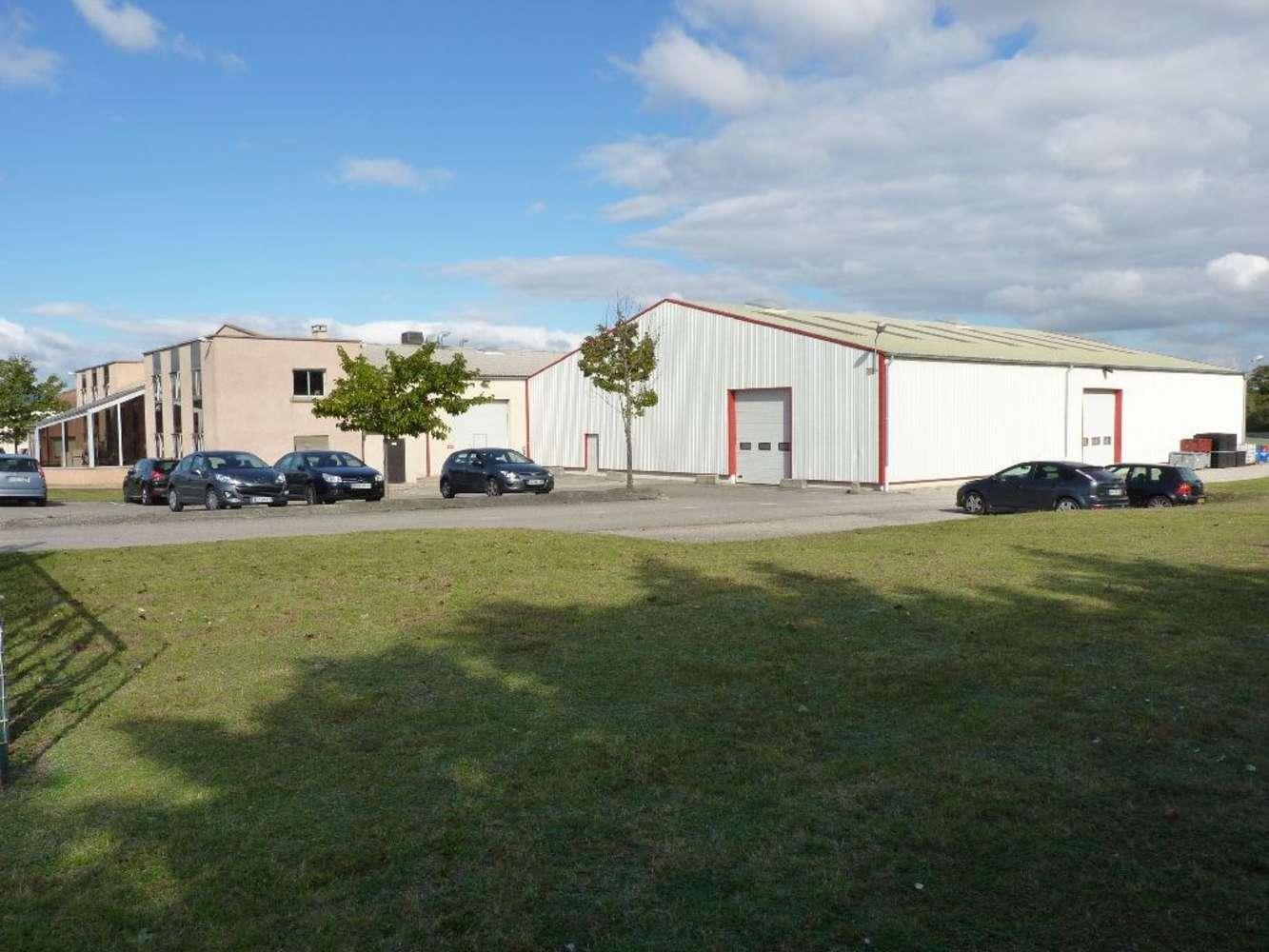 Activités/entrepôt Charvieu chavagneux, 38230 - ENTREPOT A VENDRE LYON - NORD-ISÈRE - 9591003