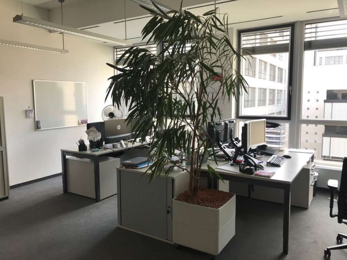 Büros Frankfurt am main, 60528 - Büro - Frankfurt am Main, Schwanheim - F1680 - 9616541