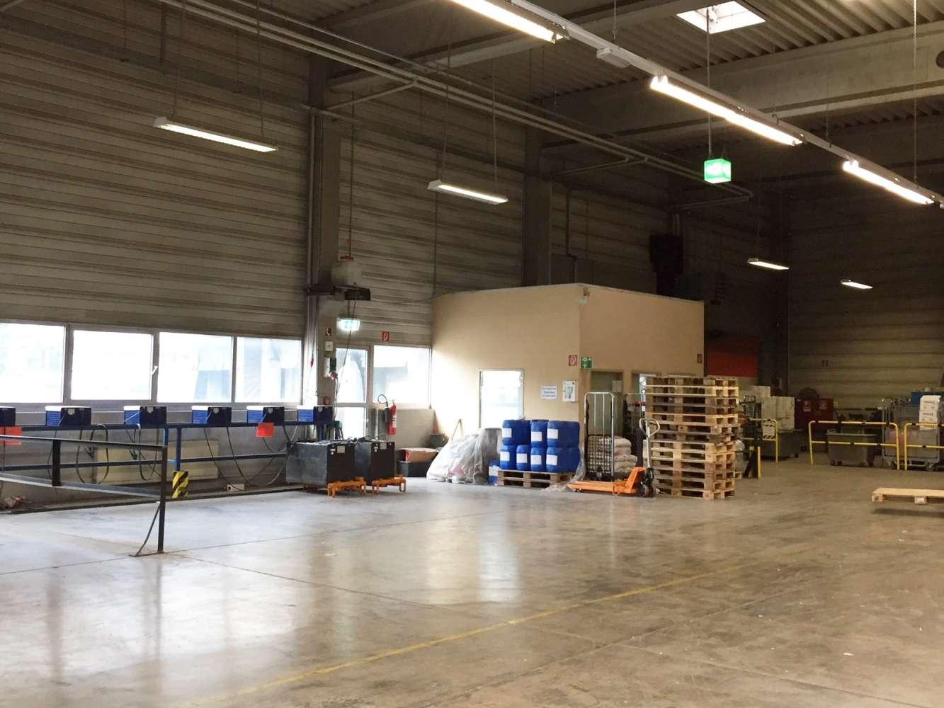 Hallen Mannheim, 68167 - Halle - Mannheim, Wohlgelegen - F2497 - 9619853