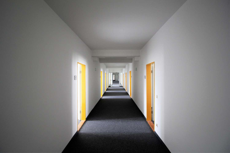 Büros Dresden, 01307 - Büro - Dresden, Johannstadt-Süd - B0775 - 9770994