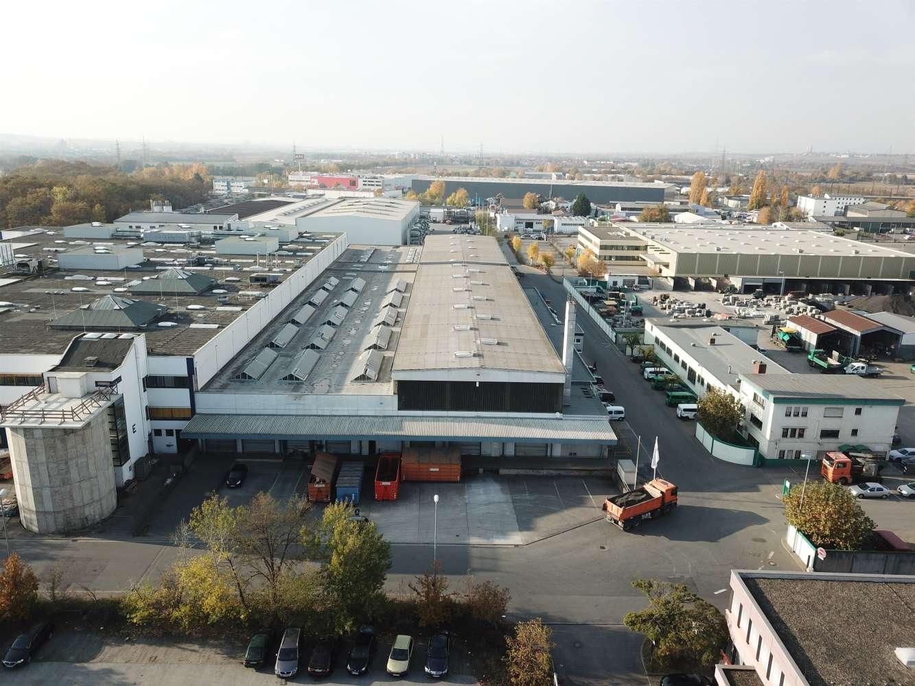 Hallen Bischofsheim, 65474 - Halle - Bischofsheim - F2540 - 9777555