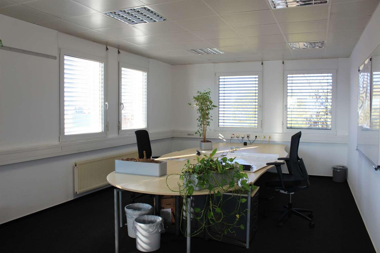 Büros Mannheim, 68219 - Büro - Mannheim, Rheinau - F1941 - 9781367