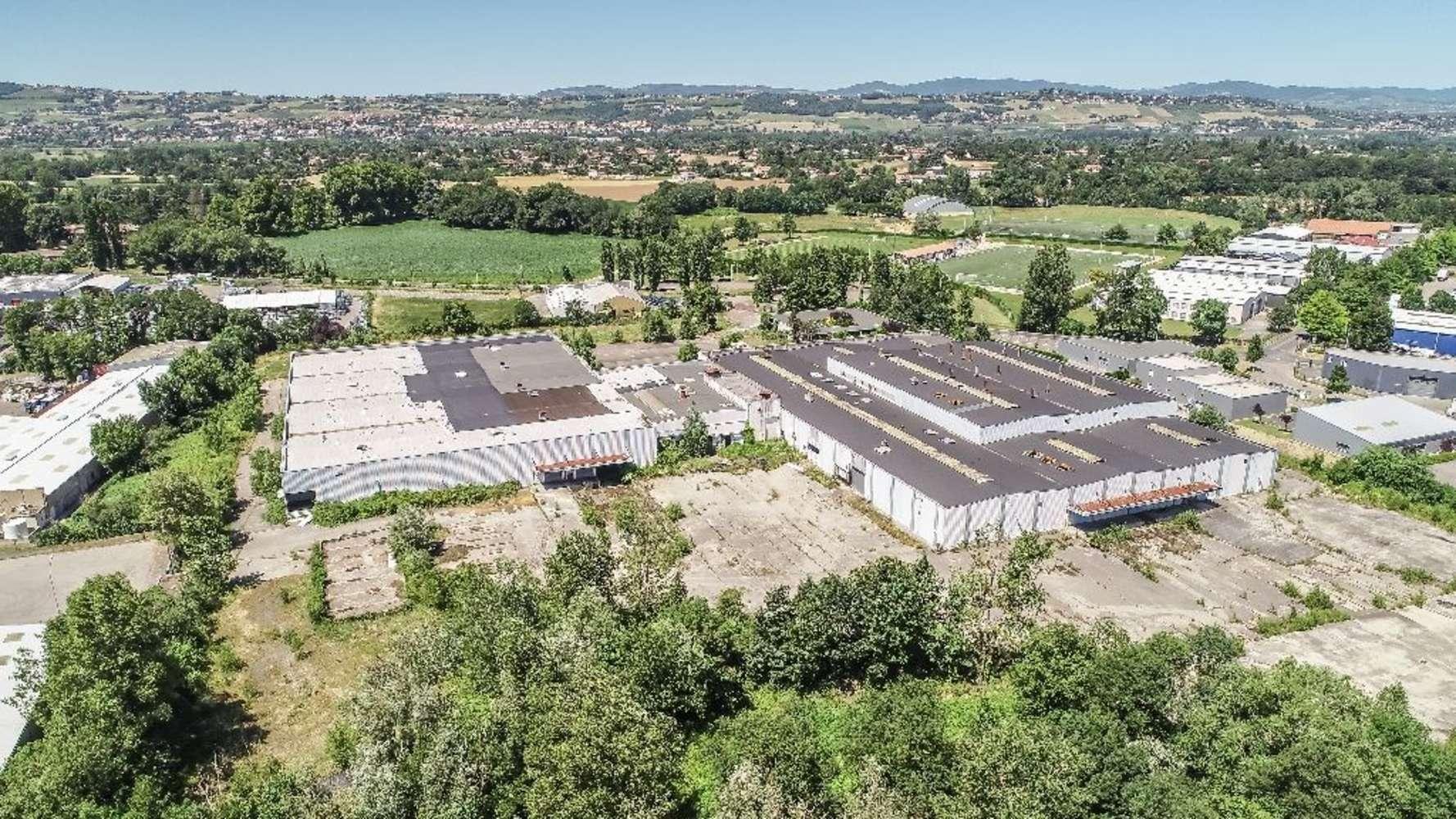 Activités/entrepôt Trevoux, 01600 - Entrepôt à vendre Lyon - Trévoux - 9783772