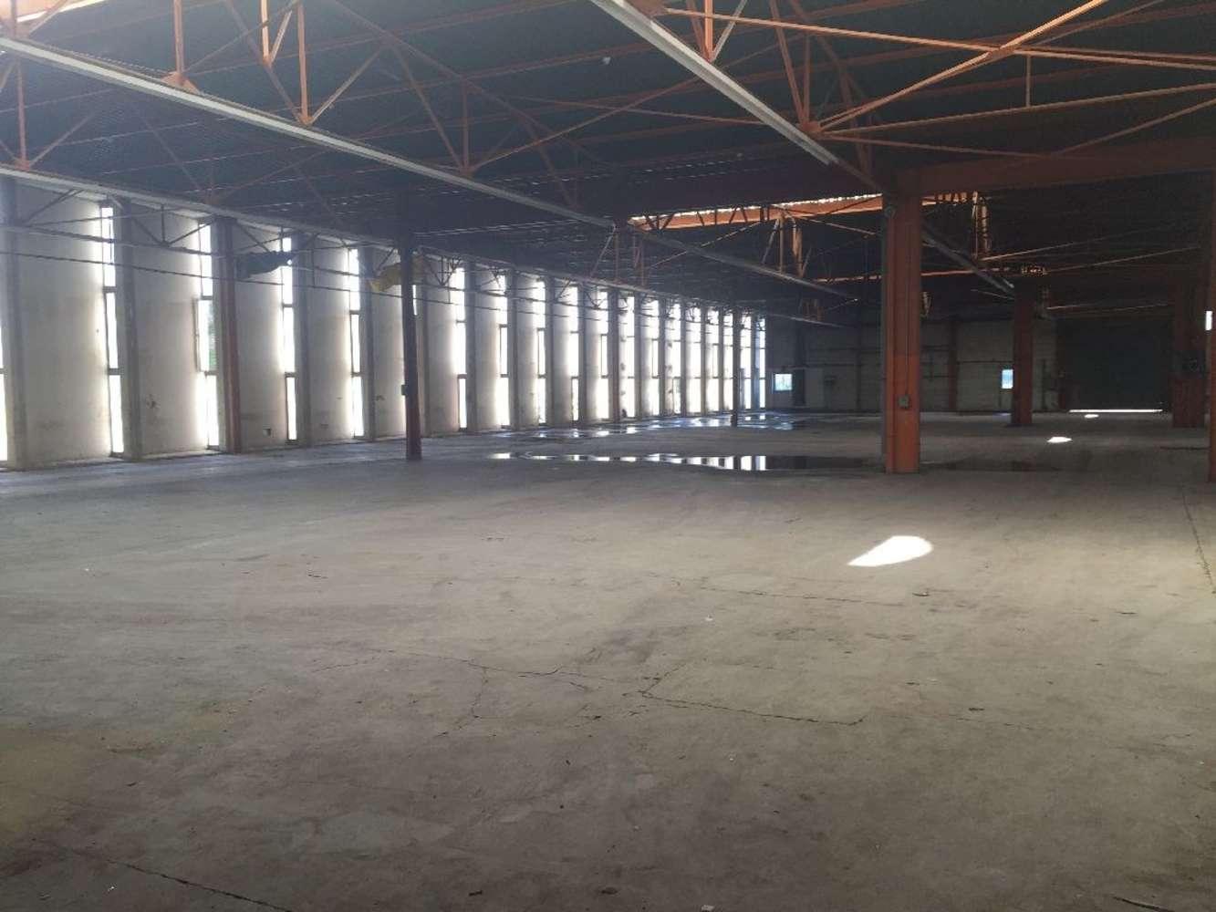 Activités/entrepôt Trevoux, 01600 - Entrepôt à vendre Lyon - Trévoux - 9783775