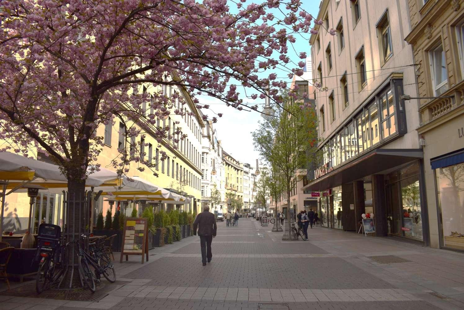 Ladenflächen Frankfurt am main, 60313 - Ladenfläche - Frankfurt am Main, Innenstadt - E0891 - 9874383