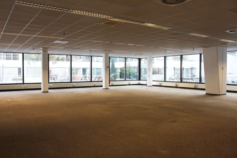 Büros Mannheim, 68161 - Büro - Mannheim - F2557 - 9887477