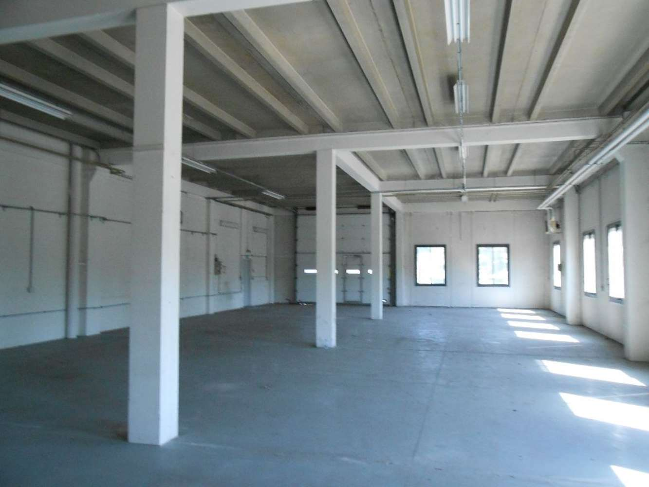 Activités/entrepôt St quentin fallavier, 38070 - Parc d'activité Saint-Quentin Fallavier - 9918039