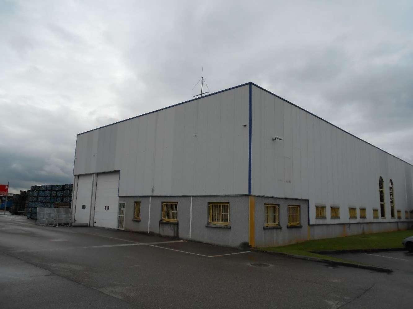 Activités/entrepôt Chassieu, 69680 - Entrepot à louer - Chassieu - Est Lyon - 9932876