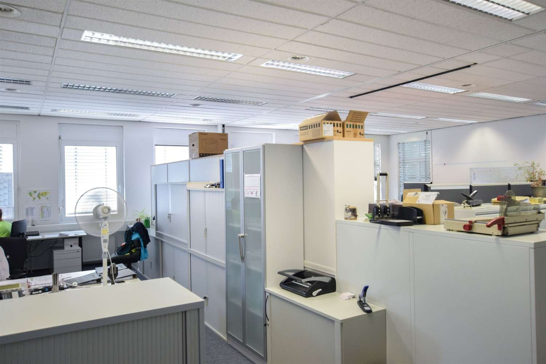 Büros Essen, 45356 - Büro - Essen, Bergeborbeck - D2532 - 9984328