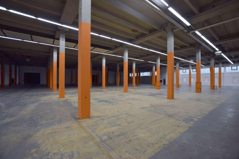 Hallen Kamen, 59174 - Halle - Kamen, Kamen-Mitte - D2536 - 9986463