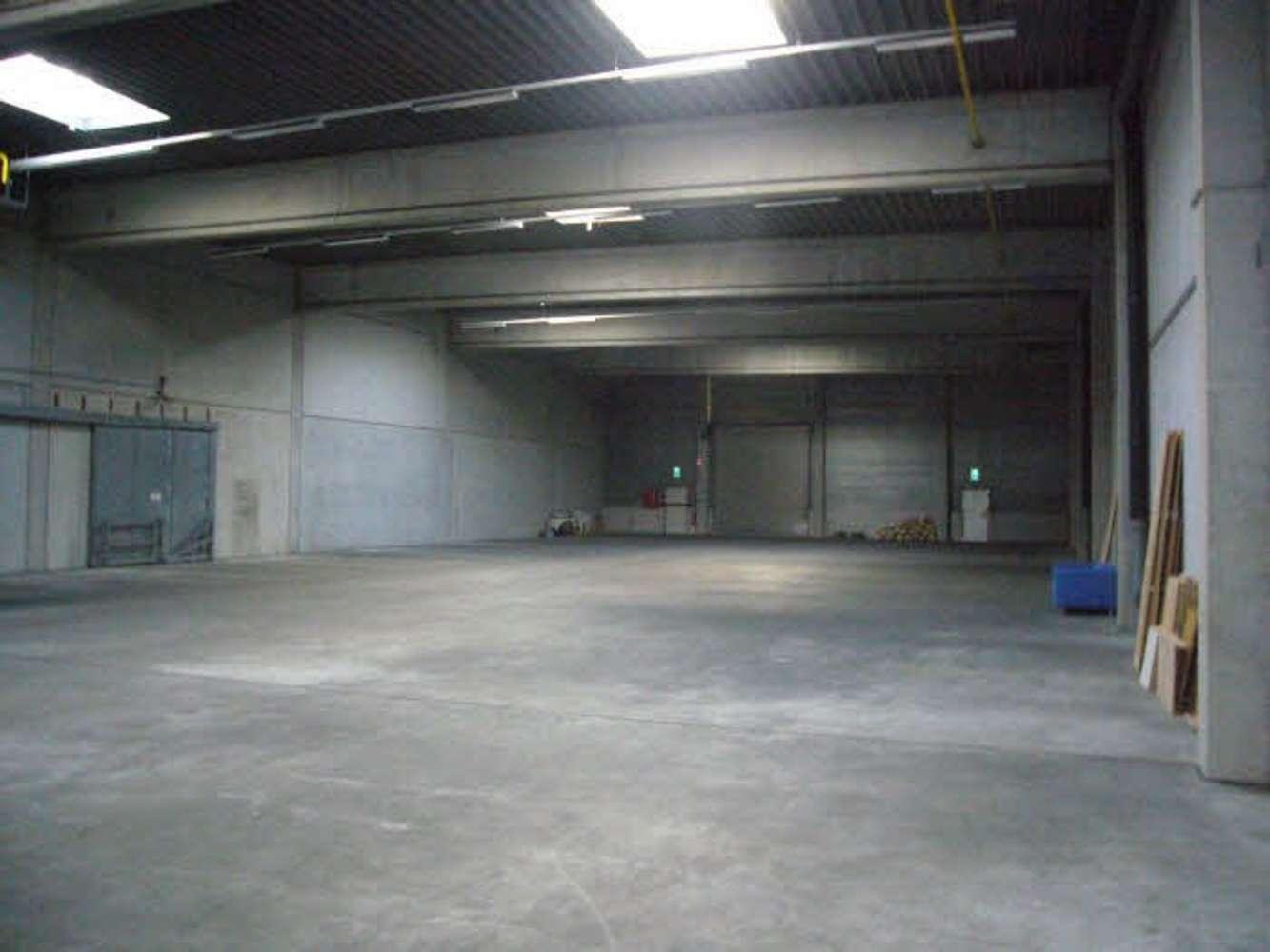Hallen Hilden, 40721 - Halle - Hilden - D2545 - 10008191