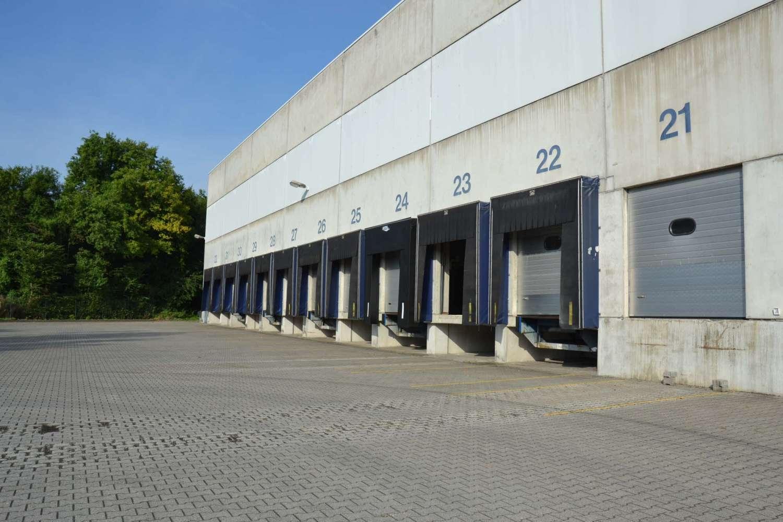Hallen Wuppertal, 42327 - Halle - Wuppertal, Vohwinkel - D1212 - 10021957