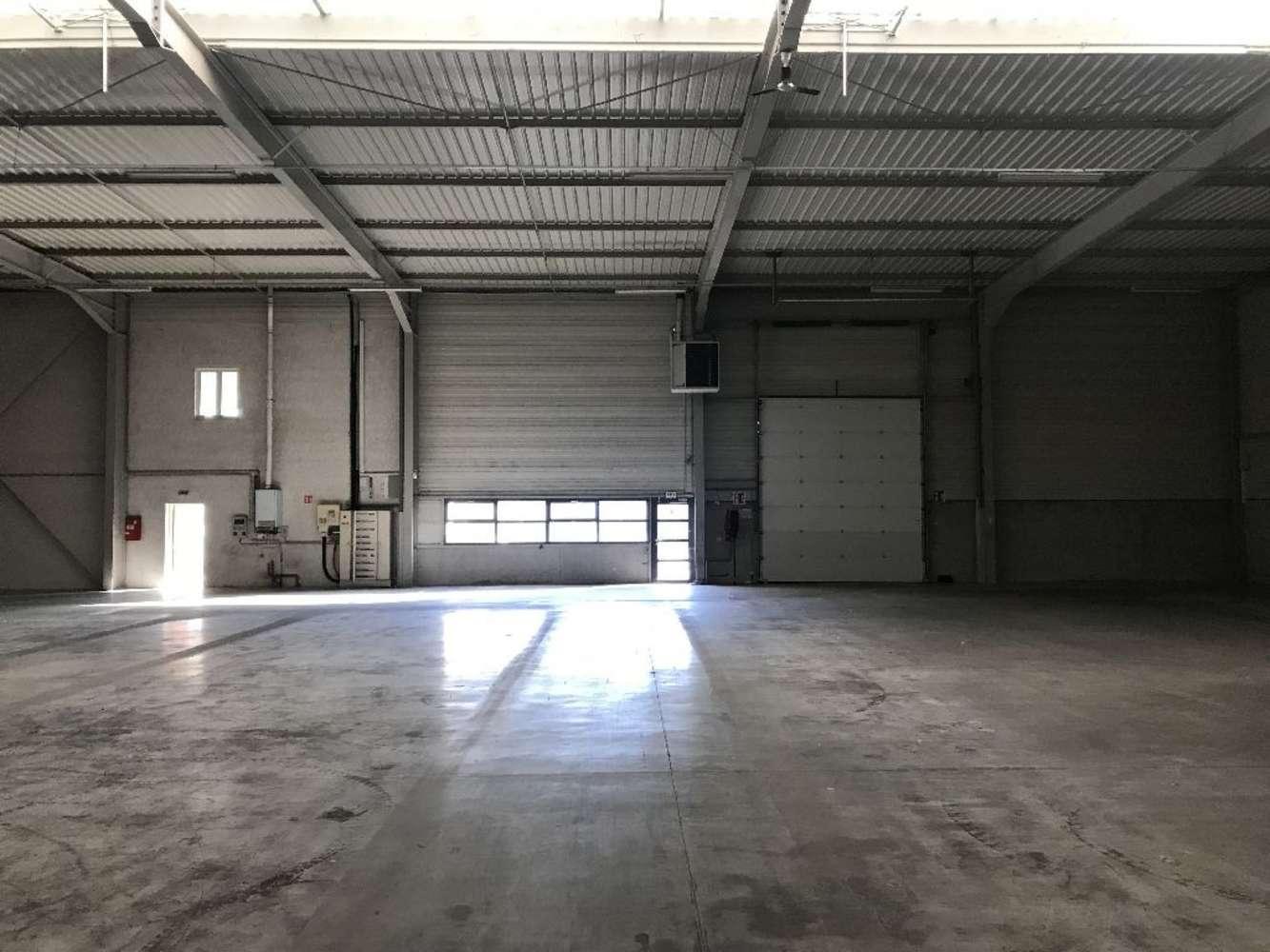Activités/entrepôt Genas, 69740 - ENTREPOT À VENDRE LYON / GENAS - 10026834