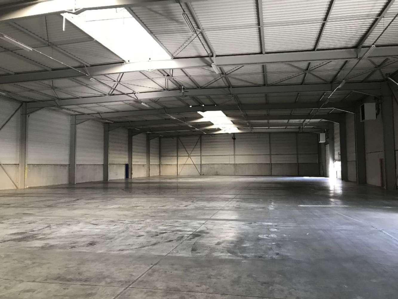 Activités/entrepôt Genas, 69740 - ENTREPOT À VENDRE LYON / GENAS - 10035386