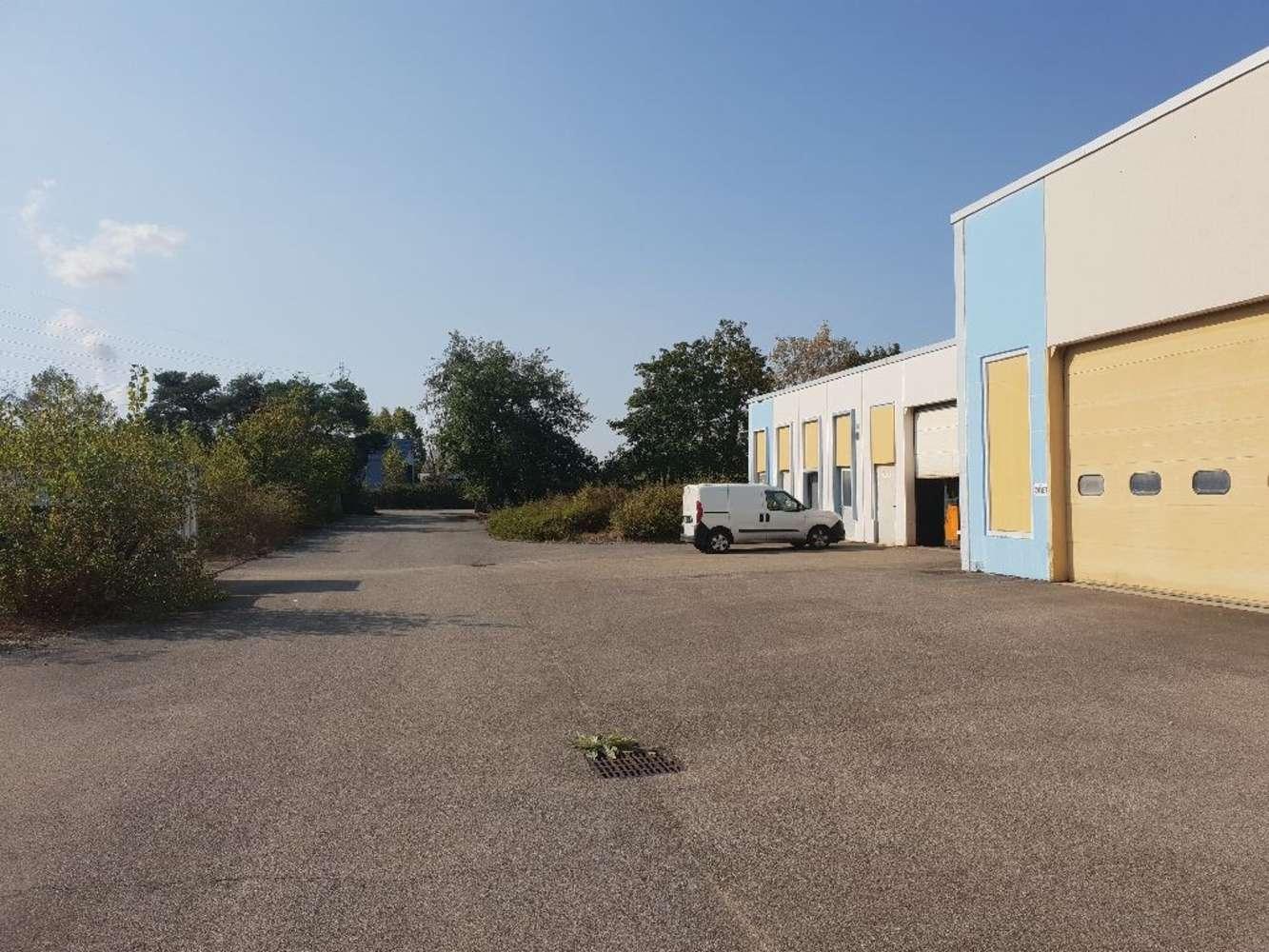 Activités/entrepôt Blyes, 01150 - Location entrepot Lyon / P.I.P.A. - 10035414