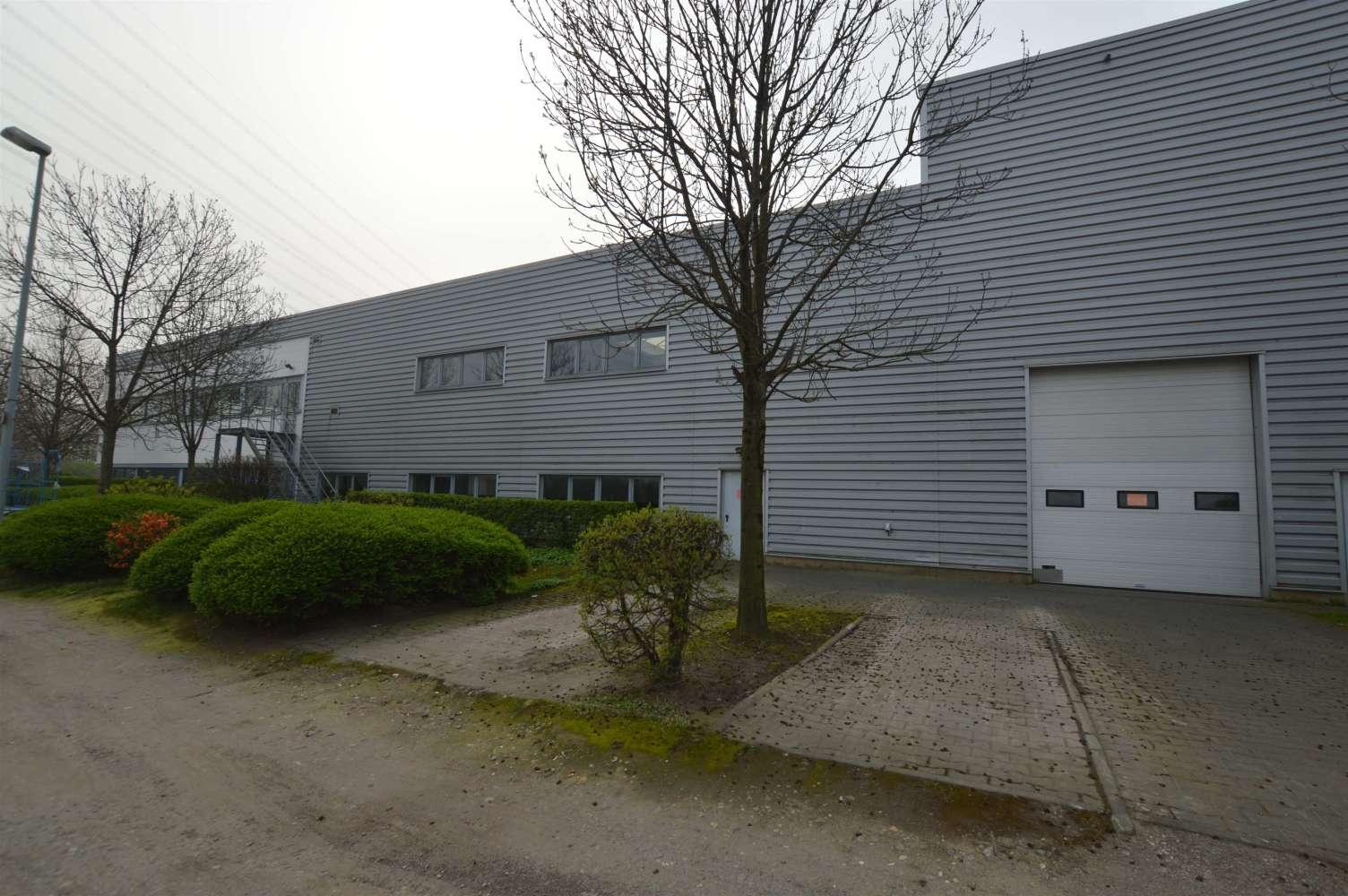 Hallen Brühl, 50321 - Halle - Brühl - K1449 - 10048316