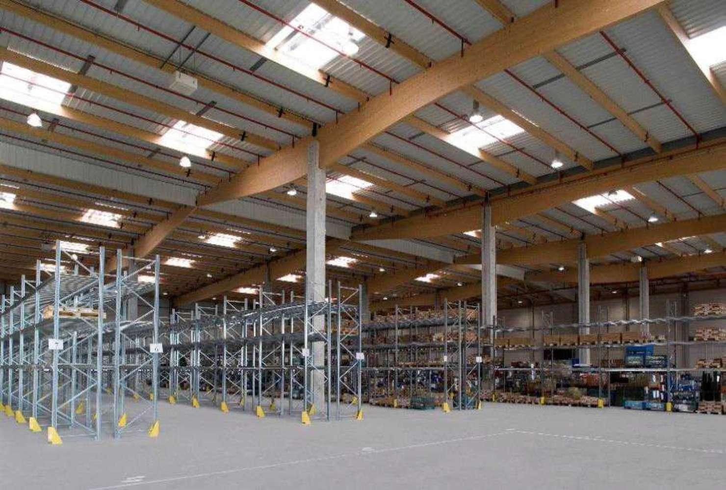 Plateformes logistiques Bourg en bresse, 01000 - LOCATION ENTREPOT LYON NORD - AIN - 10056281