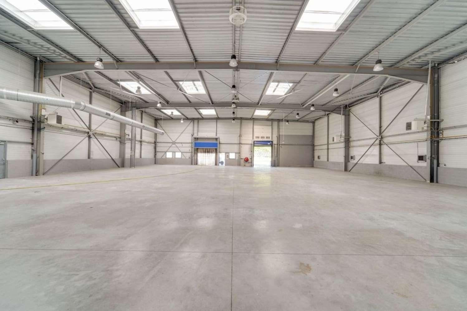 Activités/entrepôt Corbeil essonnes, 91100 - ZI DE L'APPORT PARIS - 10191262