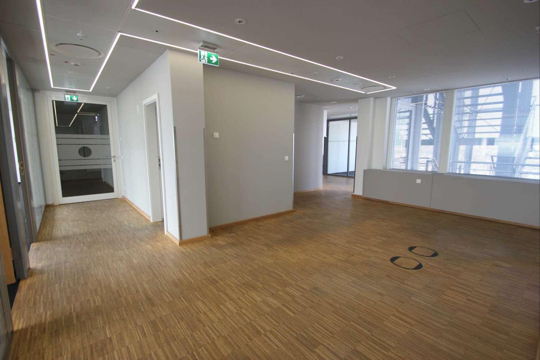 Büros Frankfurt am main, 60313 - Büro - Frankfurt am Main, Innenstadt - F0196 - 10305411