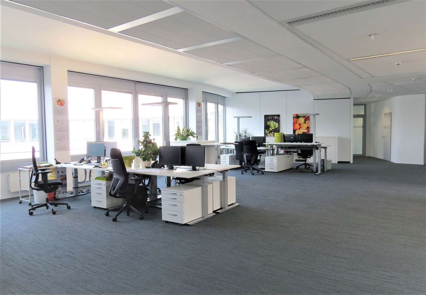 Büros Hamburg, 20537 - Büro - Hamburg, Borgfelde - H1188 - 10321865