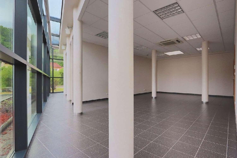 Activités/entrepôt La mulatiere, 69350 - 40 CHEMIN DU PRAS - 10368250