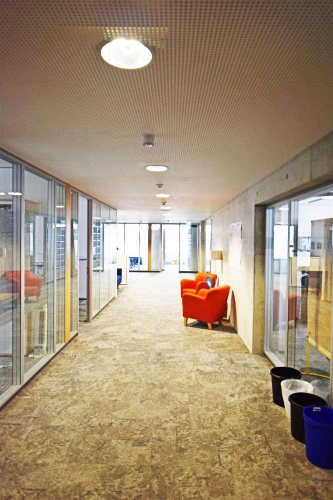 Büros Nürnberg, 90402 - Büro - Nürnberg, Tullnau - M1326 - 10456394