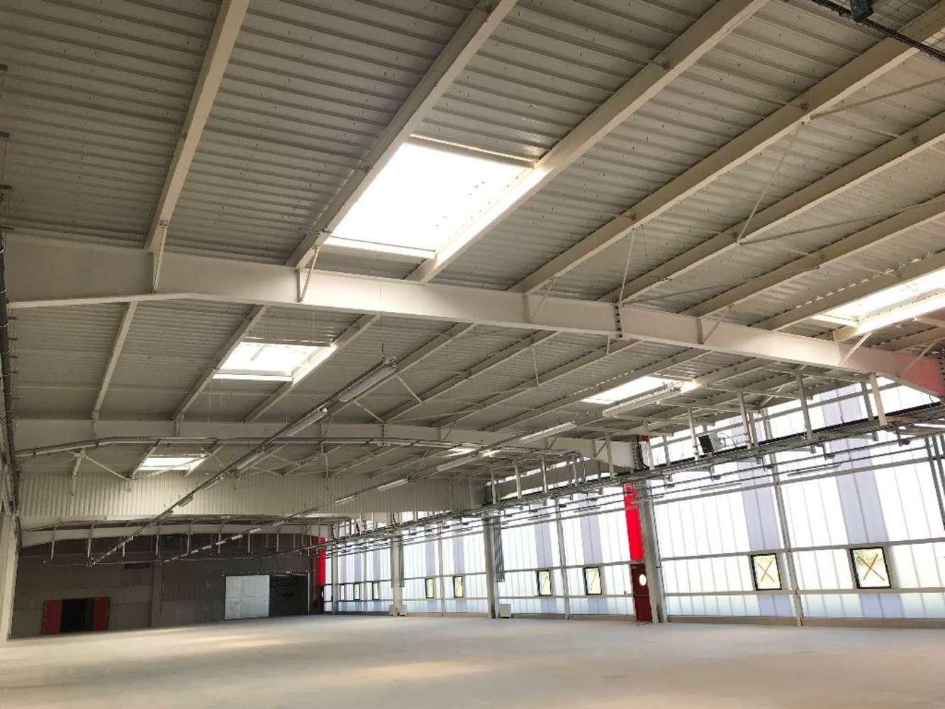 Activités/entrepôt St vulbas, 01150 - LOCATION ENTREPOT LYON NORD EST - AIN - 10471512