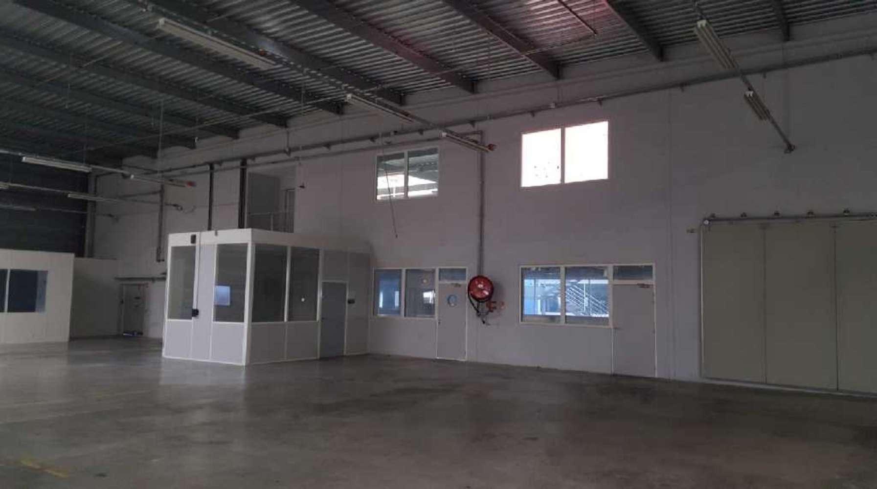 Activités/entrepôt Villejust, 91140 - ZA COURTABOEUF - 10471478