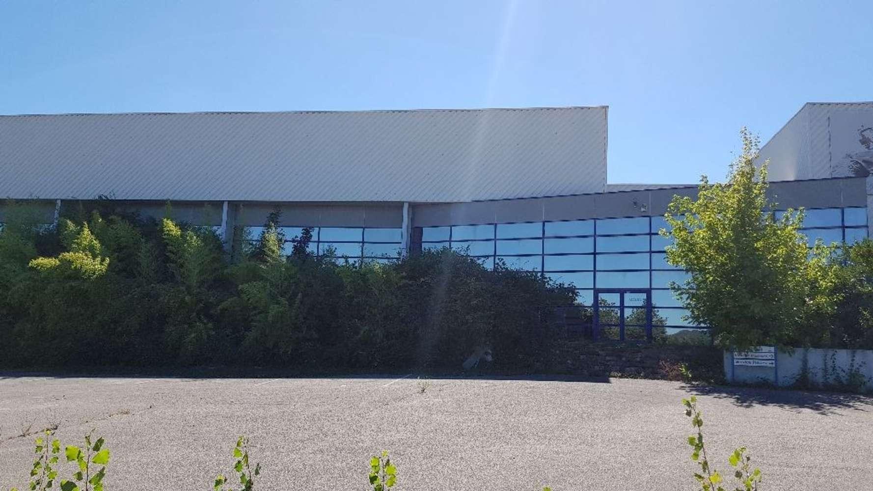 Activités/entrepôt Vaulx milieu, 38090 - Entrepot à vendre Lyon - Vaulx Milieu - 10471419