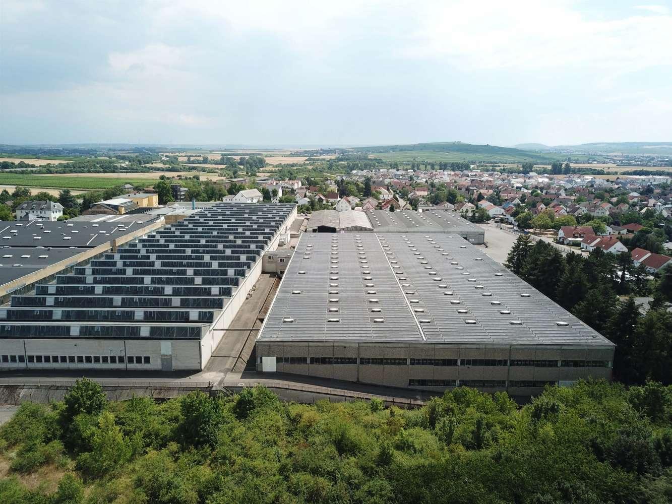 Hallen Gensingen, 55457 - Halle - Gensingen - F0300 - 10482673