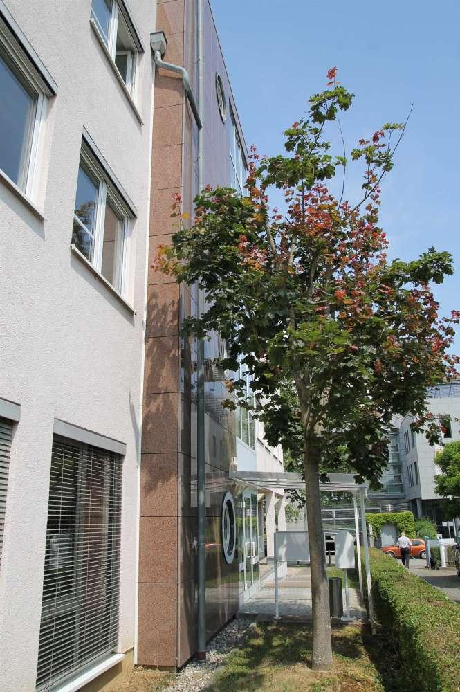 Büros Wiesbaden, 65205 - Büro - Wiesbaden, Erbenheim - F0340 - 10505836