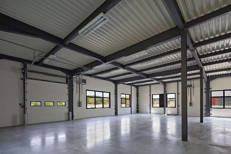 Activités/entrepôt Dardilly, 69570 - LOCATION LOCAUX D ACTIVITE LYON TECHLID - 10529073