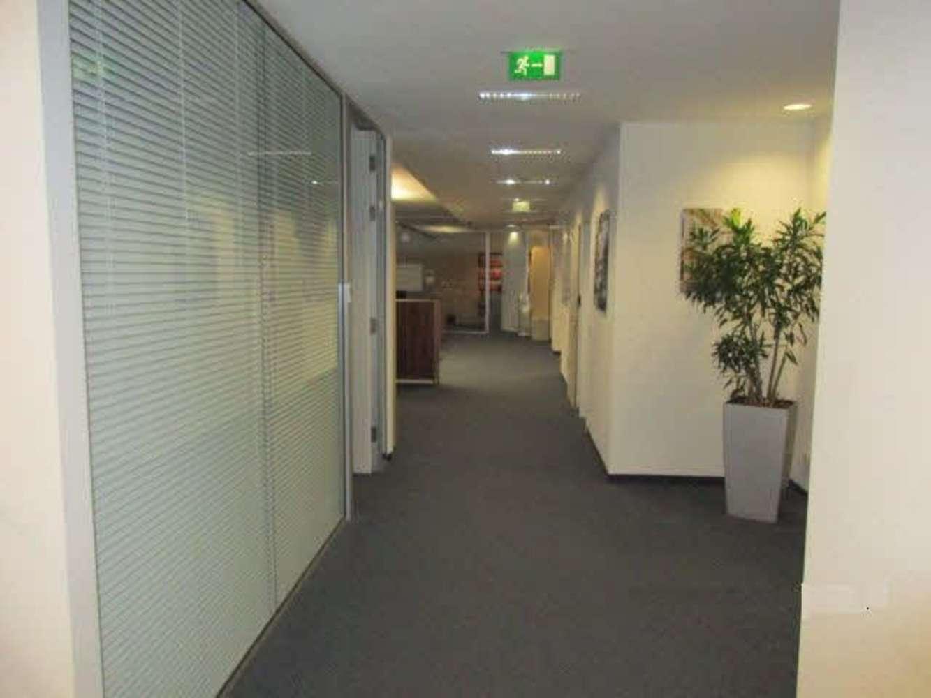 Büros Frankfurt am main, 60311 - Büro - Frankfurt am Main, Innenstadt - F1392 - 10563683