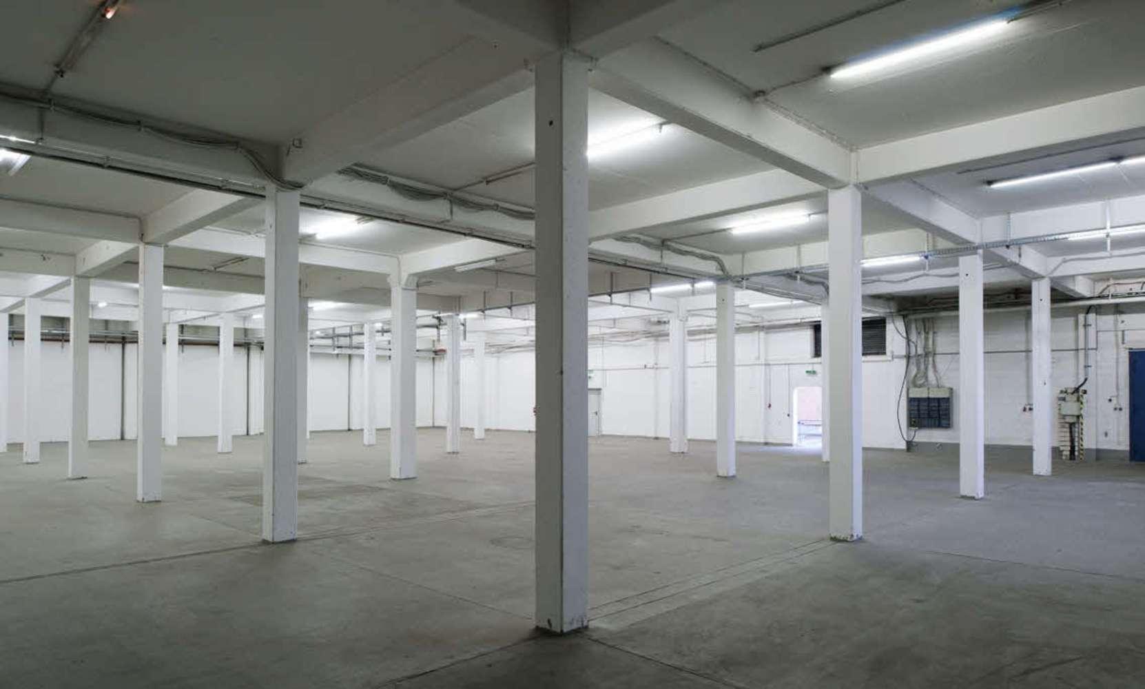 Hallen Essen, 45329 - Halle - Essen, Altenessen-Nord - D2606 - 10602594