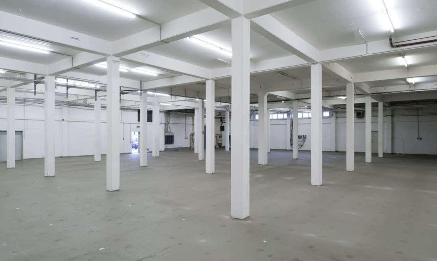 Hallen Essen, 45329 - Halle - Essen, Altenessen-Nord - D2606 - 10602597