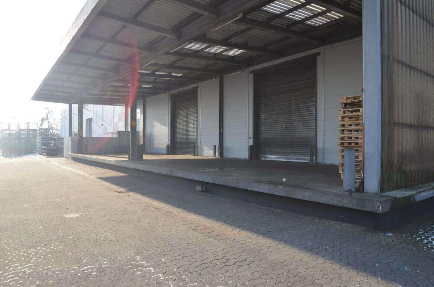Hallen Wedemark, 30900 - Halle - Wedemark, Mellendorf - H1492 - 10608603