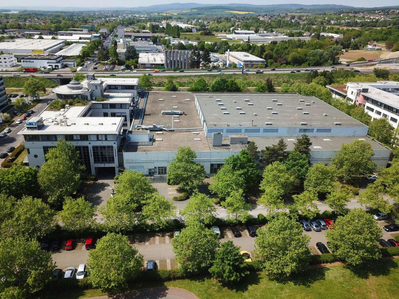 Hallen Wiesbaden, 65203 - Halle - Wiesbaden, Biebrich - F2392 - 10626863