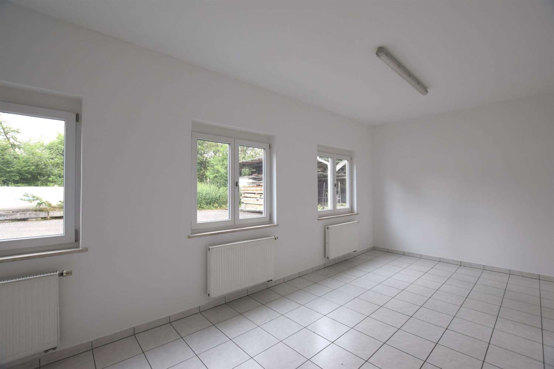 Hallen Wittibreut, 84384 - Halle - Wittibreut, Wald - M1267 - 10629276