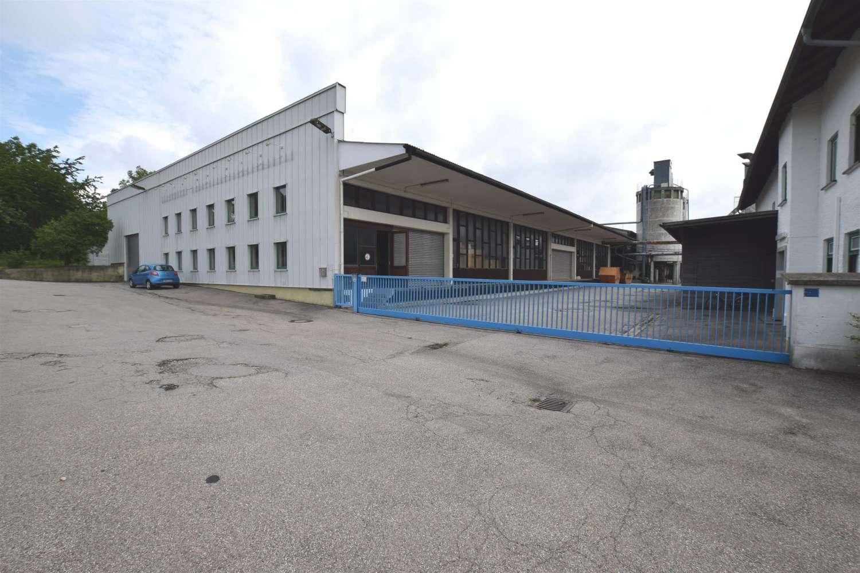 Hallen Wittibreut, 84384 - Halle - Wittibreut, Wald - M1267 - 10629275