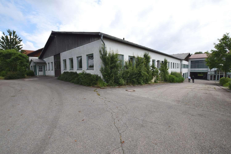 Hallen Wittibreut, 84384 - Halle - Wittibreut, Wald - M1267 - 10629279