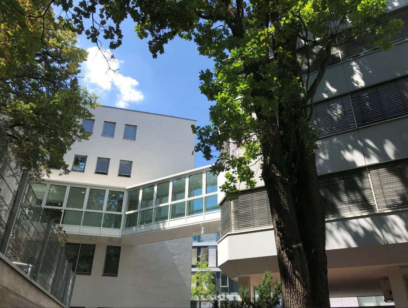 Büros Nürnberg, 90409 - Büro - Nürnberg, Gärten h d Veste - M1628 - 10644774