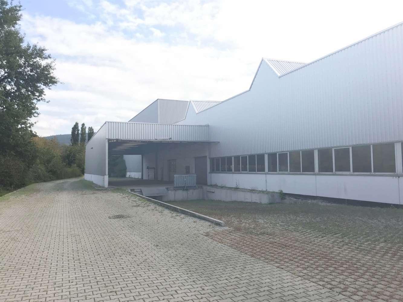 Hallen Leimen, 69181 - Halle - Leimen - F0892 - 10675382