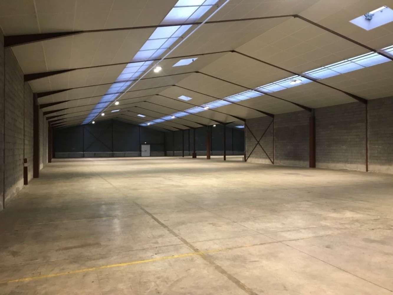 Activités/entrepôt Vern sur seiche, 35770 - 6 RUE DU BOURIDEL - 10856029