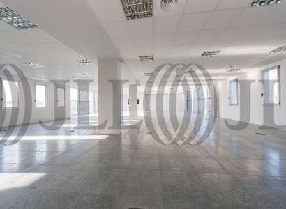 Edificio ARCIS - Oficinas, alquiler 8