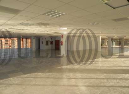 Edificio Albufera Plaza - Oficinas, alquiler 6