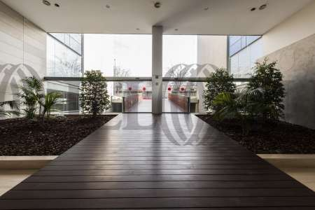 P.E. ARBORETUM - Edificio Olivo - Oficinas, alquiler 5